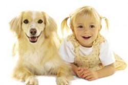 Домашние животные защитят от вирусов