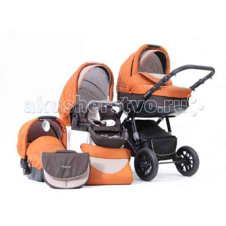 Купить Car-Baby Concord Lux 3 в 1