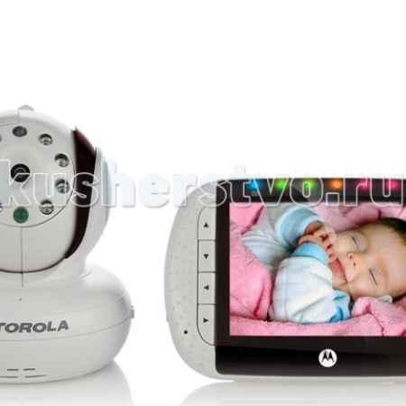 Купить Motorola MBP36S